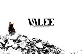 Valee Good Job.jpeg